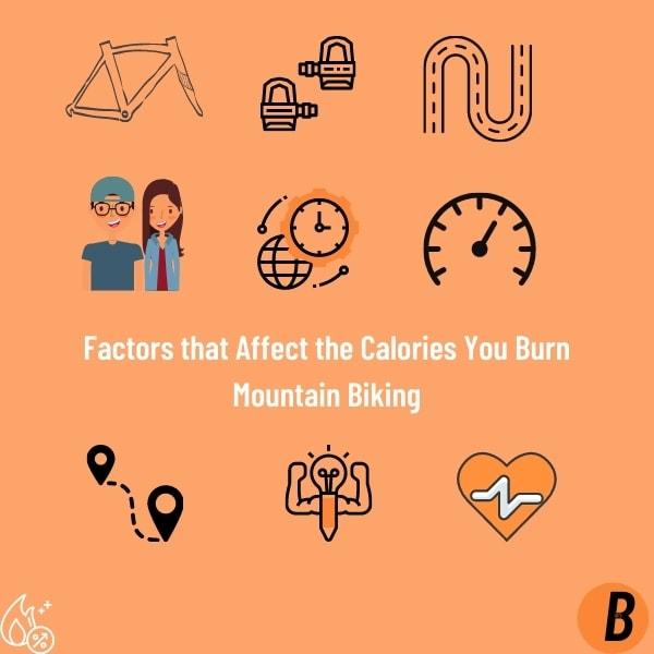 Factors that Affect the Calories You Burn Mountain Biking