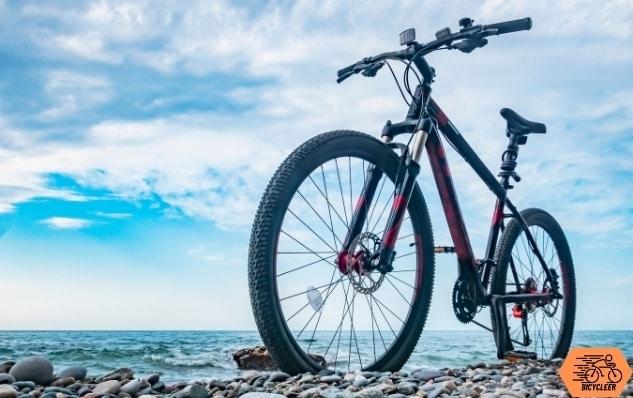 fat bike or mountain bike
