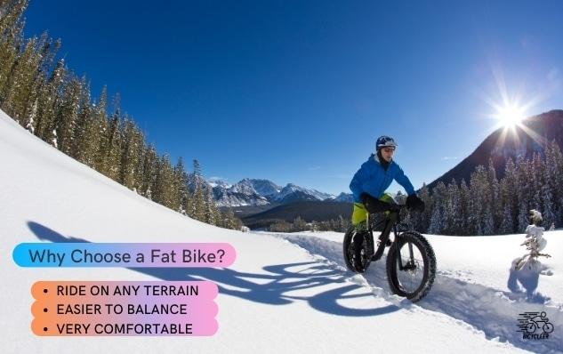 Why Choose a Fat Bike