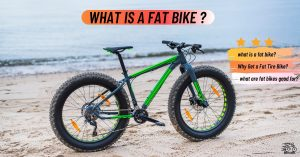 What Is A Fat Bike? Everything you need to know!